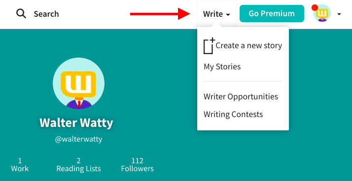 Screenshot of profile with Write option pointed to in navigation bar.